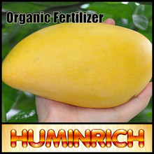 Huminrich Best Organic Fertilizer 100% Water Soluble Mango Fertilizer