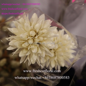 Wholesale Finest Artificial Dried Pressed Flowers For Real Flower Wedding Bouquets With Longevity