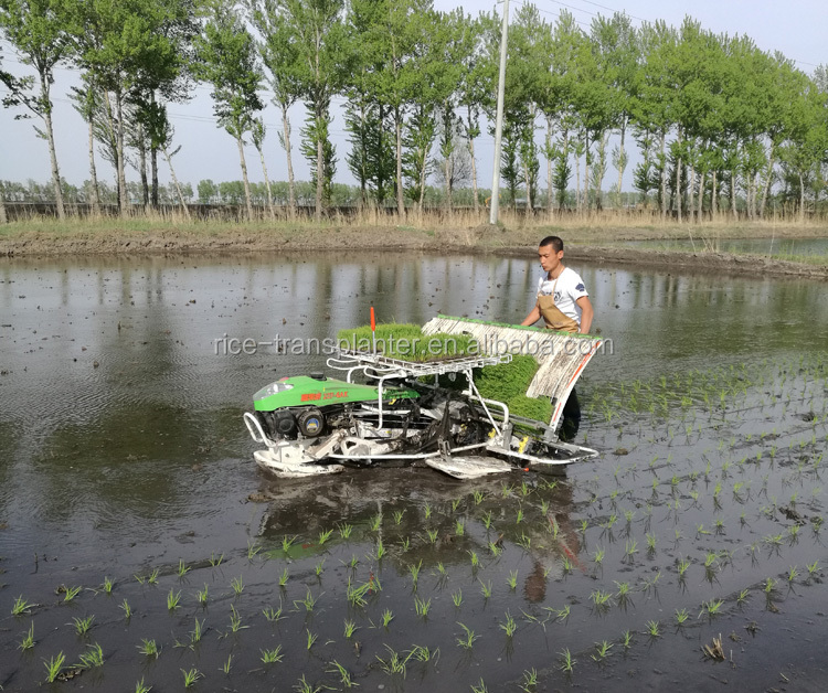 2ZF-4K model 4 rows chinese paddy rice transplanter