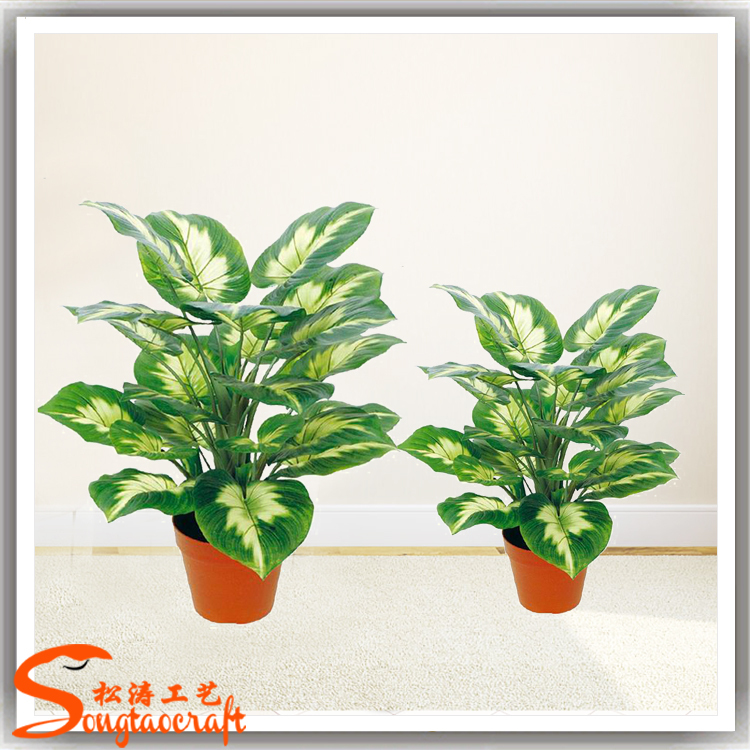 China Cheap Price Types Of Evergreen Ornamental Plants Artificial ...
