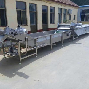Washing chili machine/fruit washing waxing grading line/vegetable cutting washing line