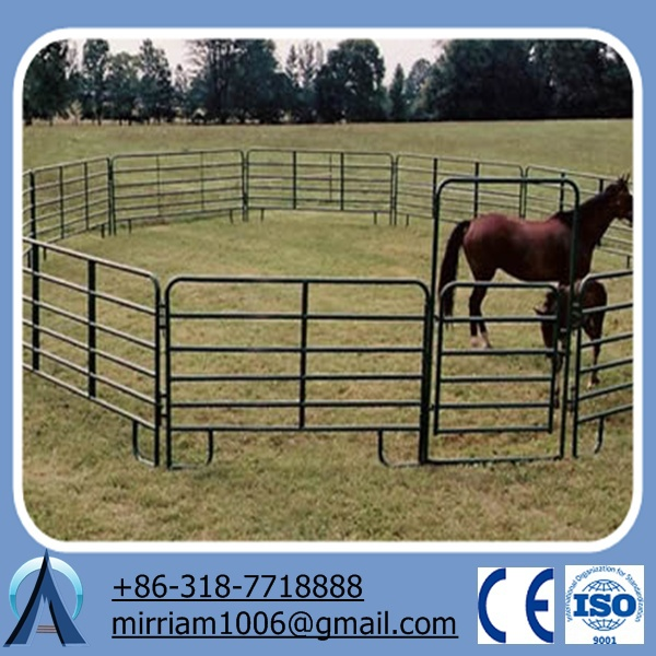horse fence panel/fence used for horses/used horse corral panels
