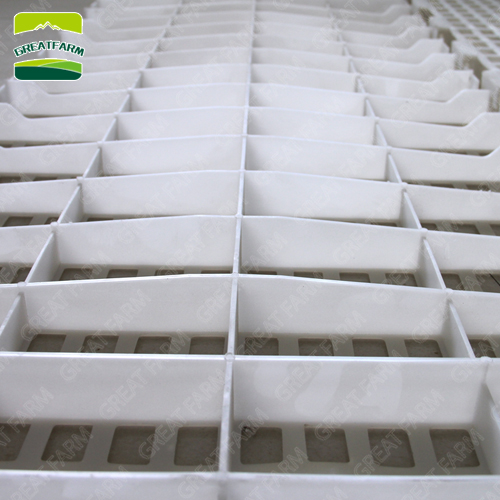 Supplier poultry equipment plastic flooring,goat slat floor for sale