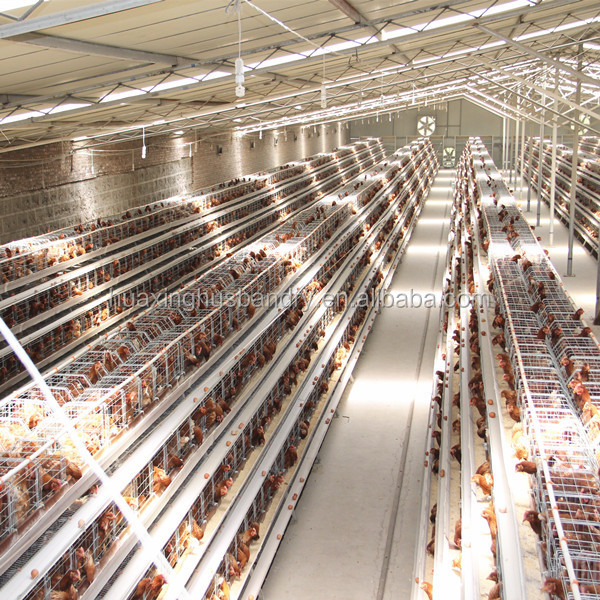 Poultry Farm Cage Wire Mesh Cage Chicken Layer For Kenya