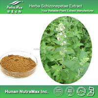 Schizonepeta Extract, Schizonepeta Extract Powder, Natural Schizonepeta Extract
