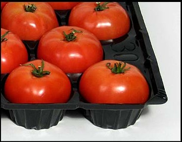 Factory Direct Supply wholesale Food Grade Polypropylene Plastic Fruit tray for Tomato