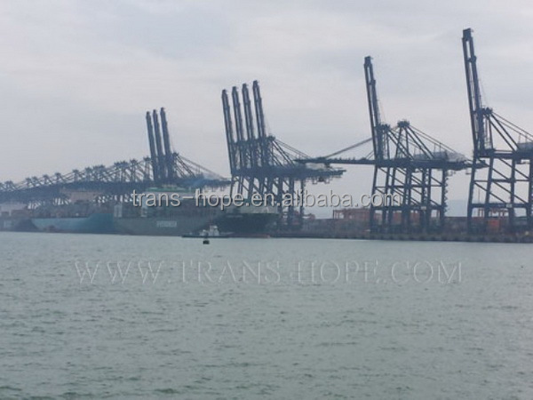 Best quality hot selling guangdong sea freight rates to brisbane
