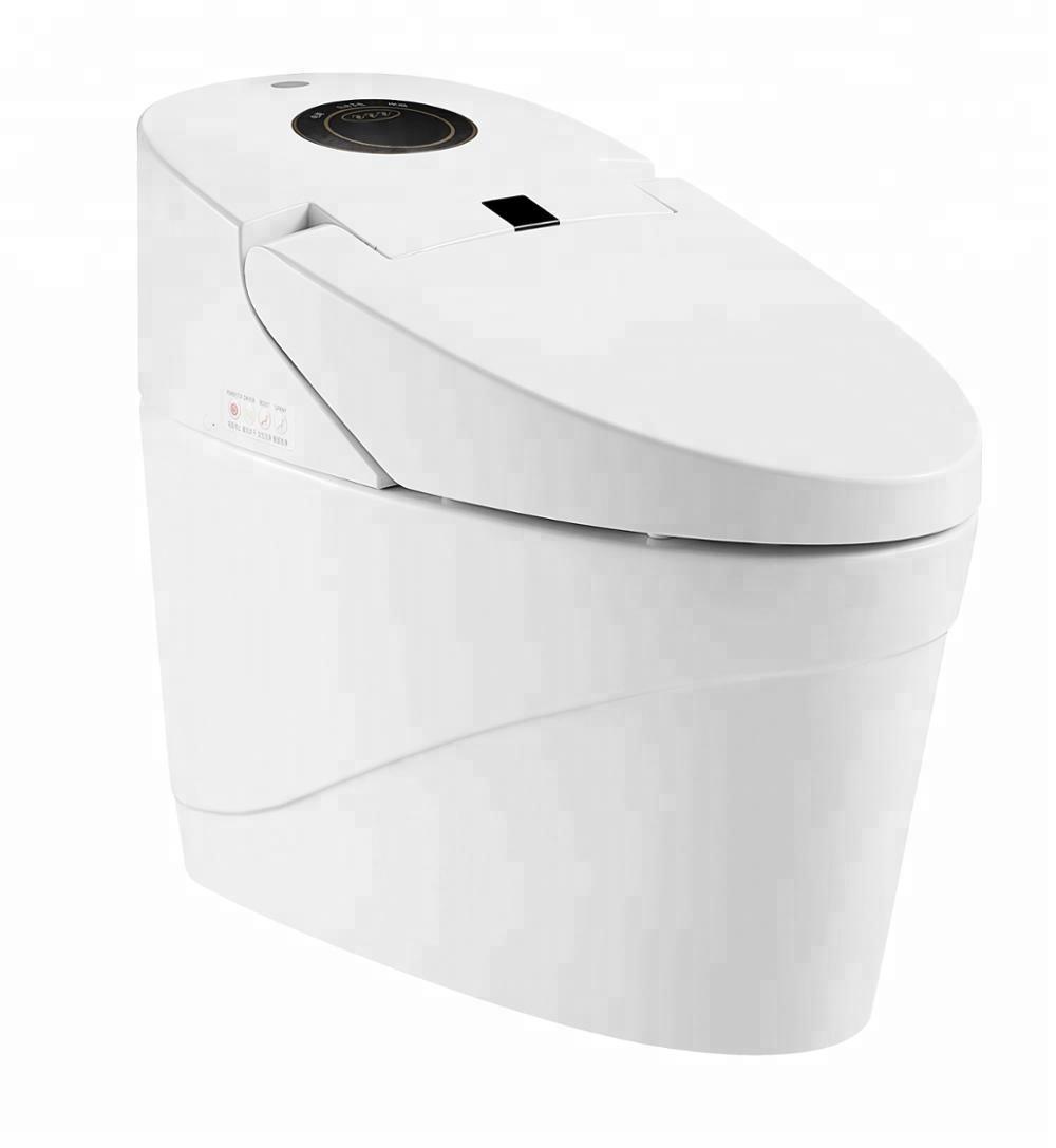 China Sanitary Ware Bidet Spray Electric Smart Toilet Zjs 04 Buy