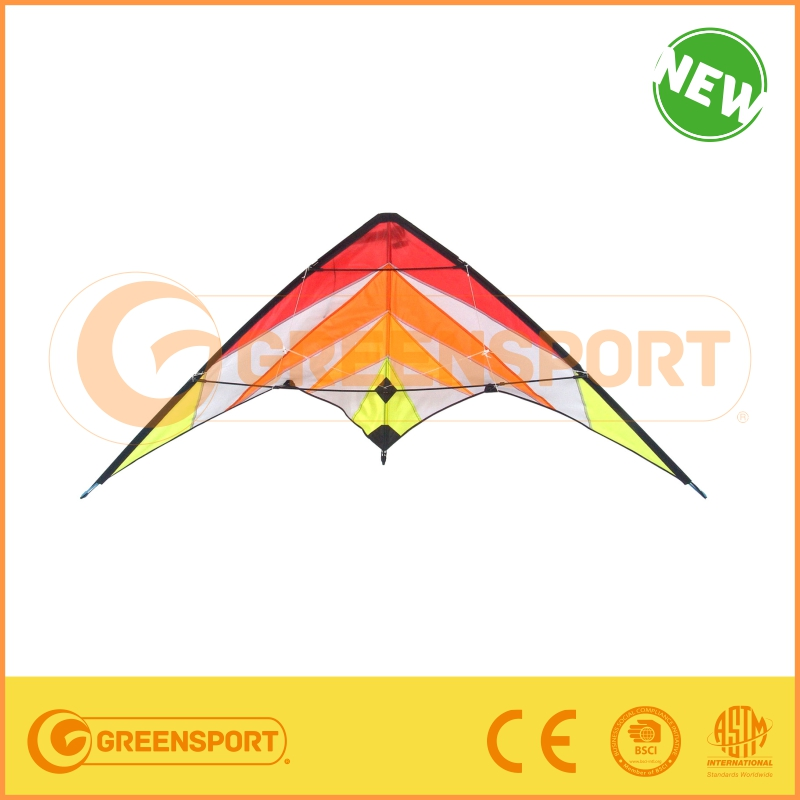 promotion kite with kind of colorful pattern from manufactory