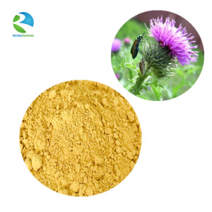 Best Price Natural Milk Thistle Extract Powder with Silymarin 80%