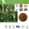 High quality 2.5%-5% Triterpene Glycosides Black Cohosh Extract
