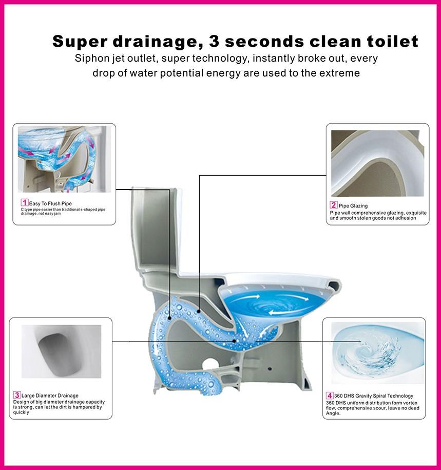 Black Dual Flush Toilet