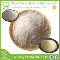 Buy vegetarian organic gelatin powder from China gelatin factory plant