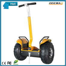 2016 Hot New Product chariot self balance electric vehicle with handle