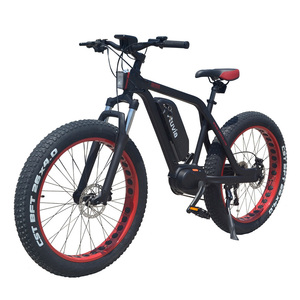 Buy Fastest 10 speed ebike fat tire electric bike bicycle in china