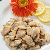 High quality frozen baby clams without shell