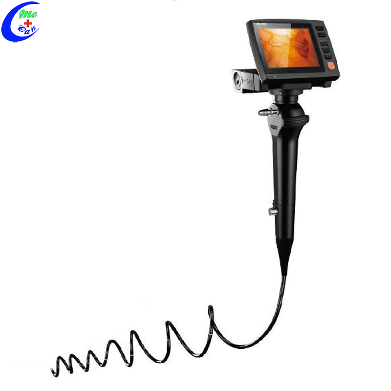 endoscope price