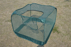 green house 10x10 grow tent plants growth