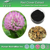 Free Sample of Pure Red Clover Extract Powder