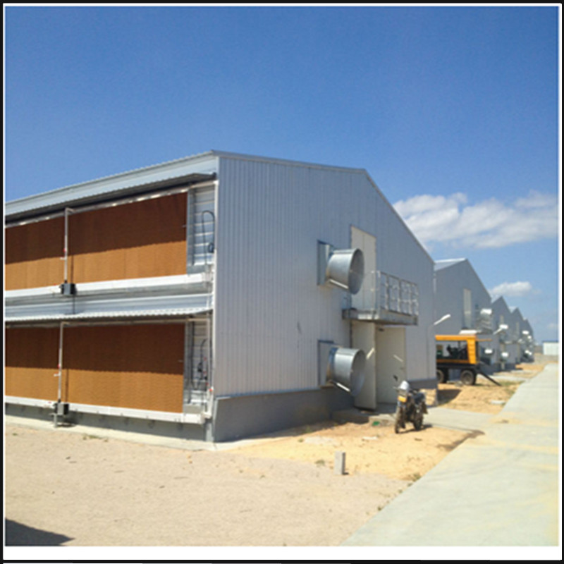 Industrial commercial chicken house for sale