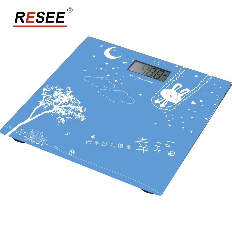 cas weighing scale portable digital luggage weighing scale