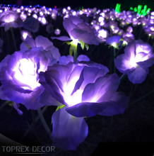 <span class=keywords><strong>Hong</strong></span> <span class=keywords><strong>kong</strong></span> warm white led rose led luci <span class=keywords><strong>da</strong></span> giardino