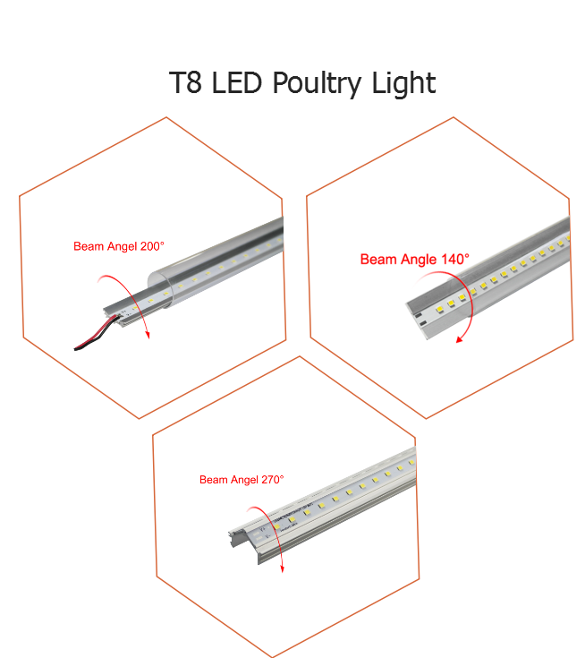Chicken farm dimmable and programable tube Light and dimmer system for chicken farm