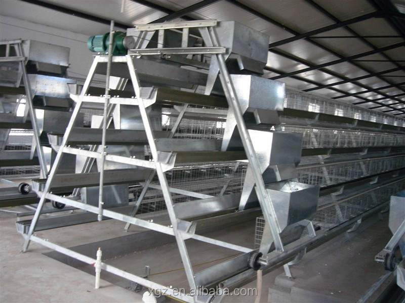 Best Selling Chicken Poultry Farm Equipment