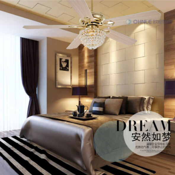 24 Ceiling Fan With Light
