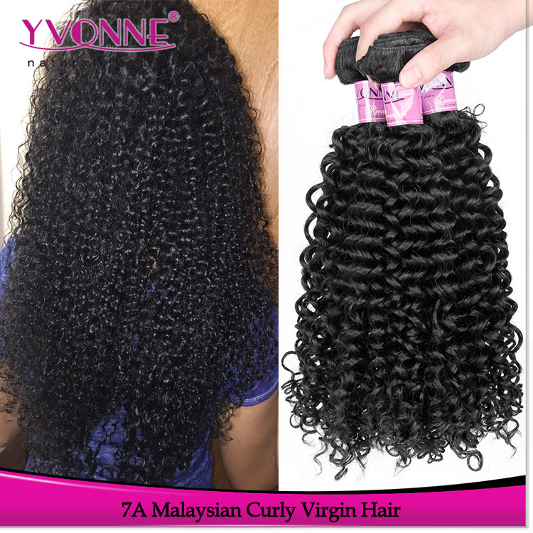 Yvonne wholesale alibaba hair top quality brazilian virgin hair malaysian curly shedding free weft hair