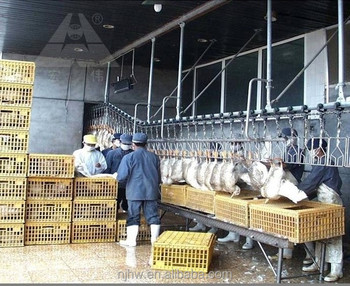 Peachy Turnkey Halal Chicken Slaughter Equipment With Capacity Of 1000 Birds Per Hour Complete Poultry Slaughterhouse Line Buy Chicken Download Free Architecture Designs Rallybritishbridgeorg
