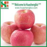Chinese New Seasonal Fresh Fuji Apple/Sweet Red Fuji Apple Fruit/Apple Exporting Prices