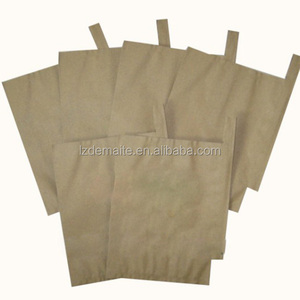 20x30cm UV protection Pure wood pulp paper bag for mango growing for Sri Lanka market