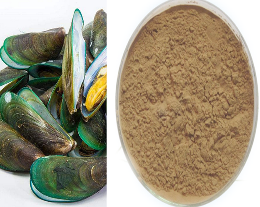 ISO Factory Manufactured Green Lipped Mussel <strong>Powder</strong> Mussel <strong>Powder</strong>
