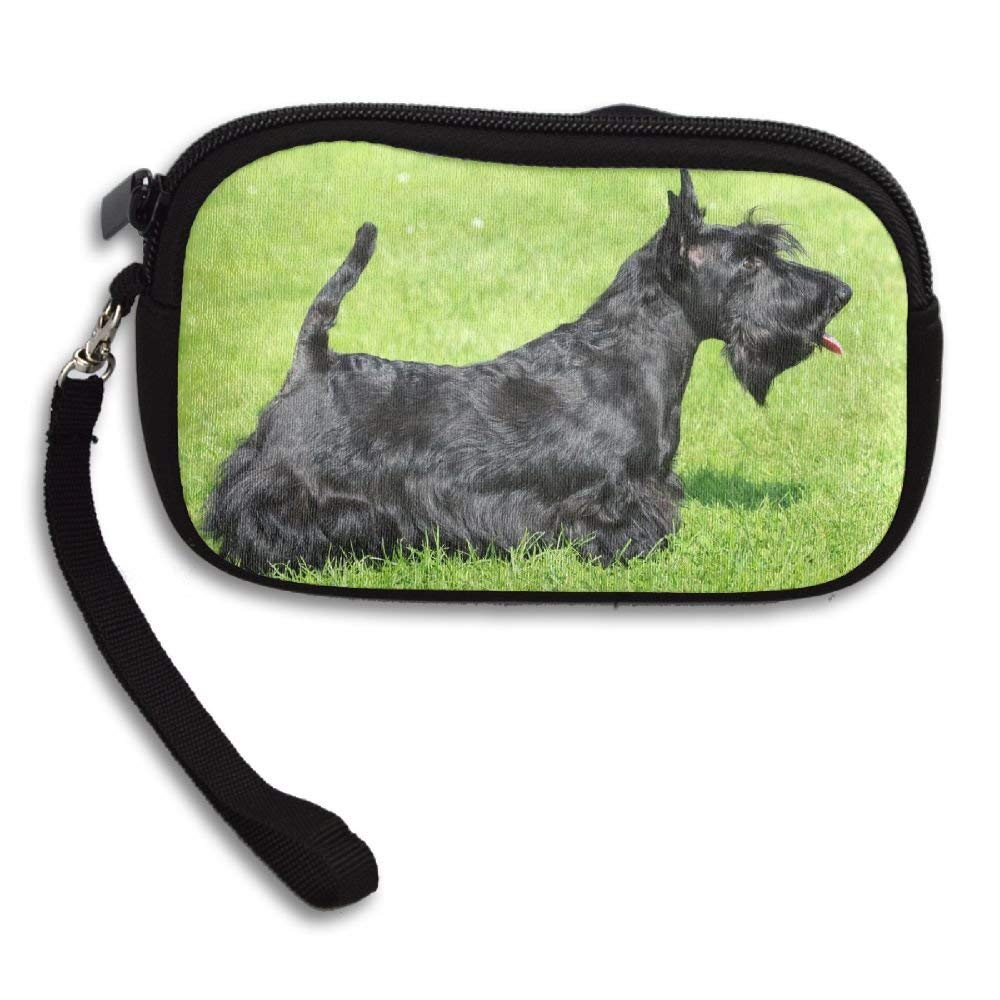 Schnauzer Dog Classic Square Coin Purse Buckle Vintage PU Pouch Kiss-lock Wallet for Women Girl
