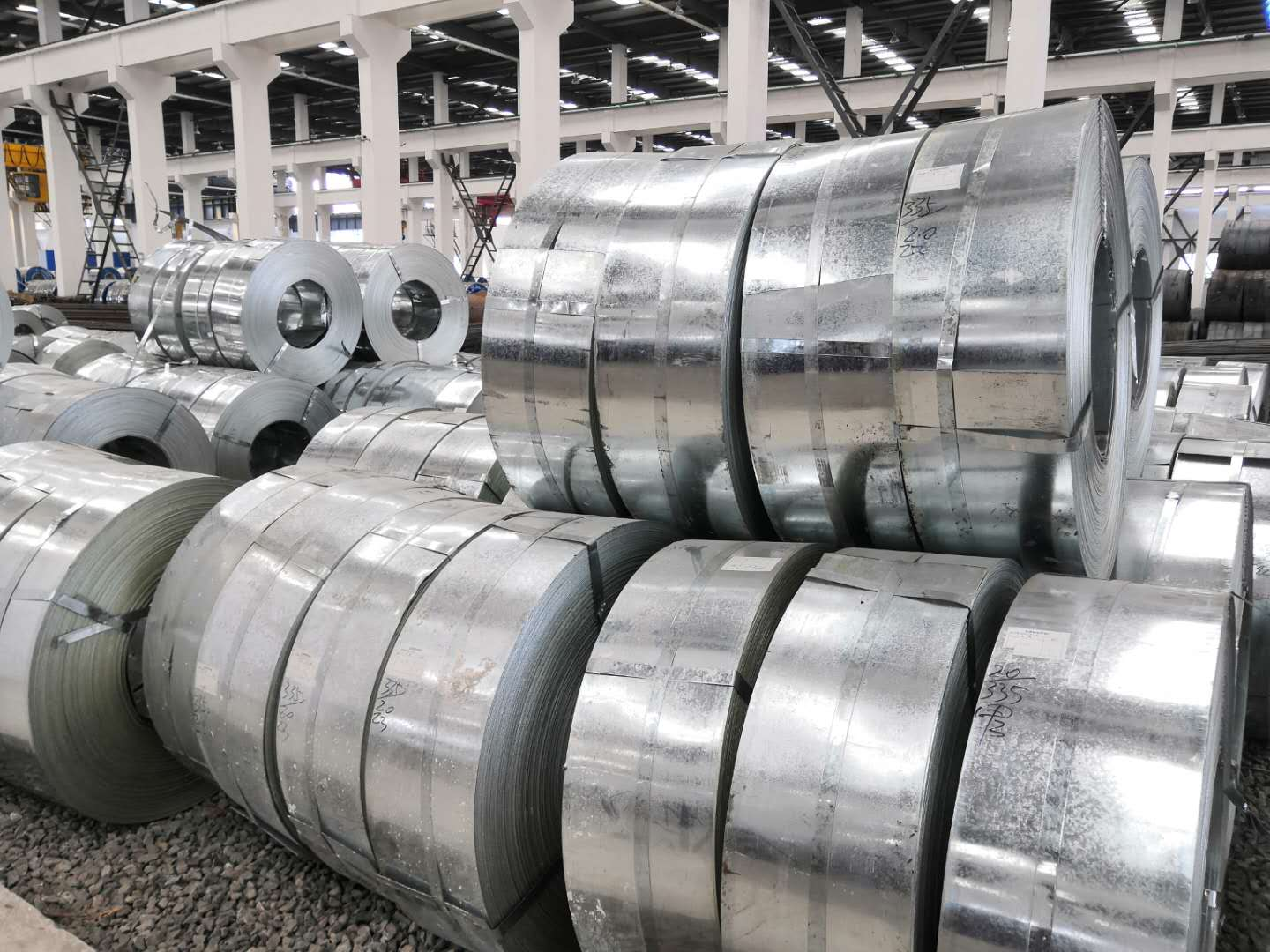 Electro-galvanized steel coils DX51D strip coil