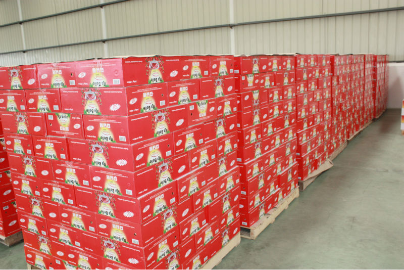 2015 New Products Health Food Tomato Paste With Good Price For ...