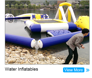 Forest Animal Themed Inflatable Water Slide With Swimming Pool For Sale