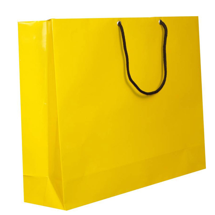 Fancy shape laminated retail paper bags custom