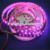 Hot Sale IP20 IP65 IP67 Flexible WS2812B 5050SMD RGB DC5V Addressable LED Light Strip