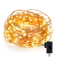 33Ft 100 Leds UK US AU EU Power Adaptor DC Plug Starry Lamp Led Copper Wire String Fairy String Light For Party Home Decor