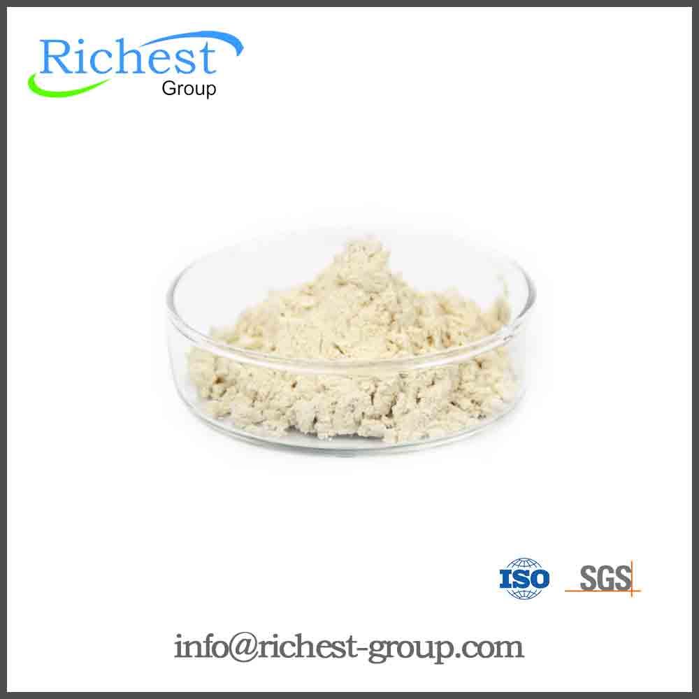 72c517d7055f5 Yüksek Kaliteli Organik Vital Buğday Gluteni Üreticilerinden ve Organik Vital  Buğday Gluteni Alibaba.com'da yararlanın