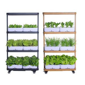 China factory direct sale greenhouse hydroponics Vegetable cultivator lettuce hydroponics system