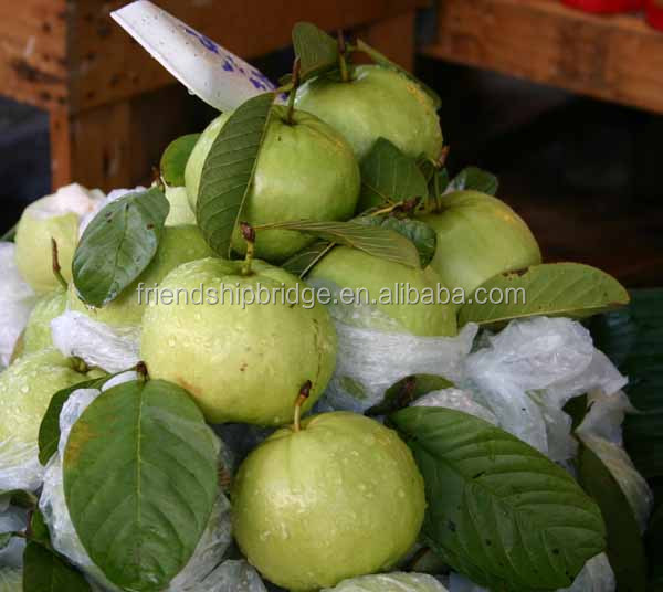 Red Guava Fruit Images