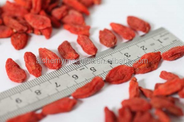 China Berries, China Berries Manufacturers and Suppliers on