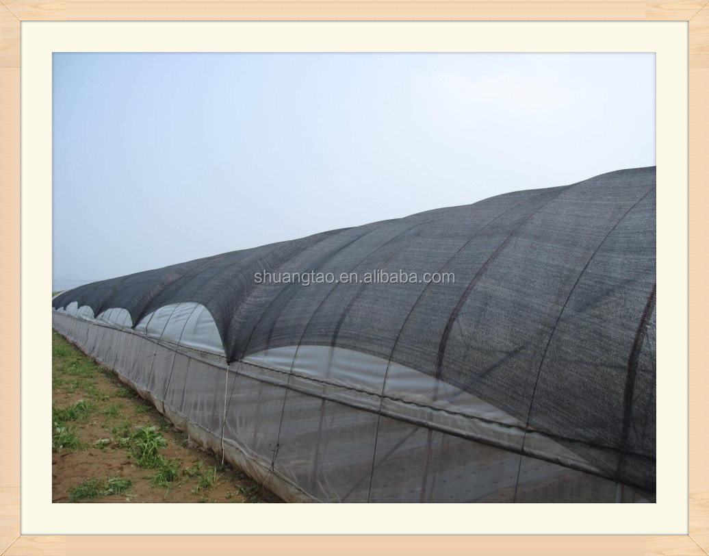 Professional production HDPE green shade net & sun shade net price & waterproof shade net