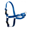 Professional Reliable Manufacturer Customized Pet Harness Strap Harness