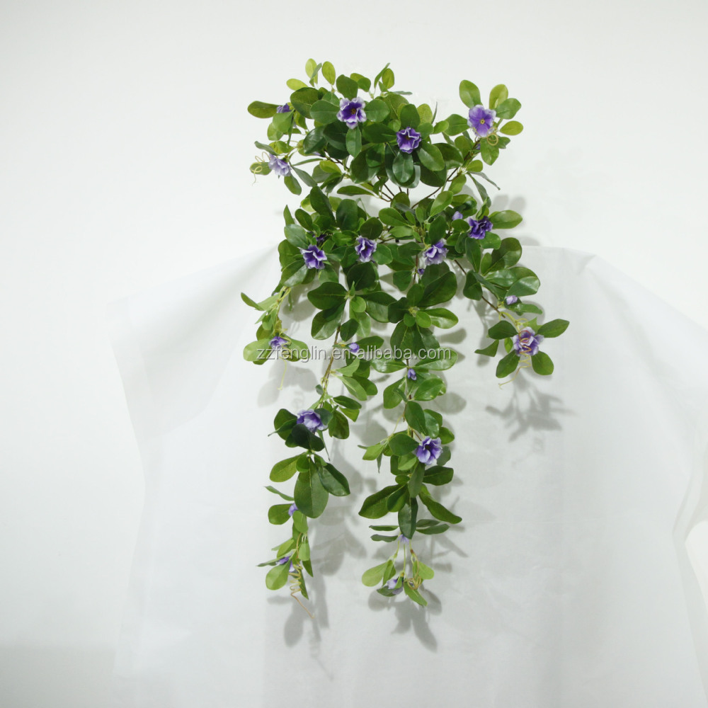 Plantas Colgantes De Interior Soporte De Pared Con La Planta - Plantas-colgantes-de-interior