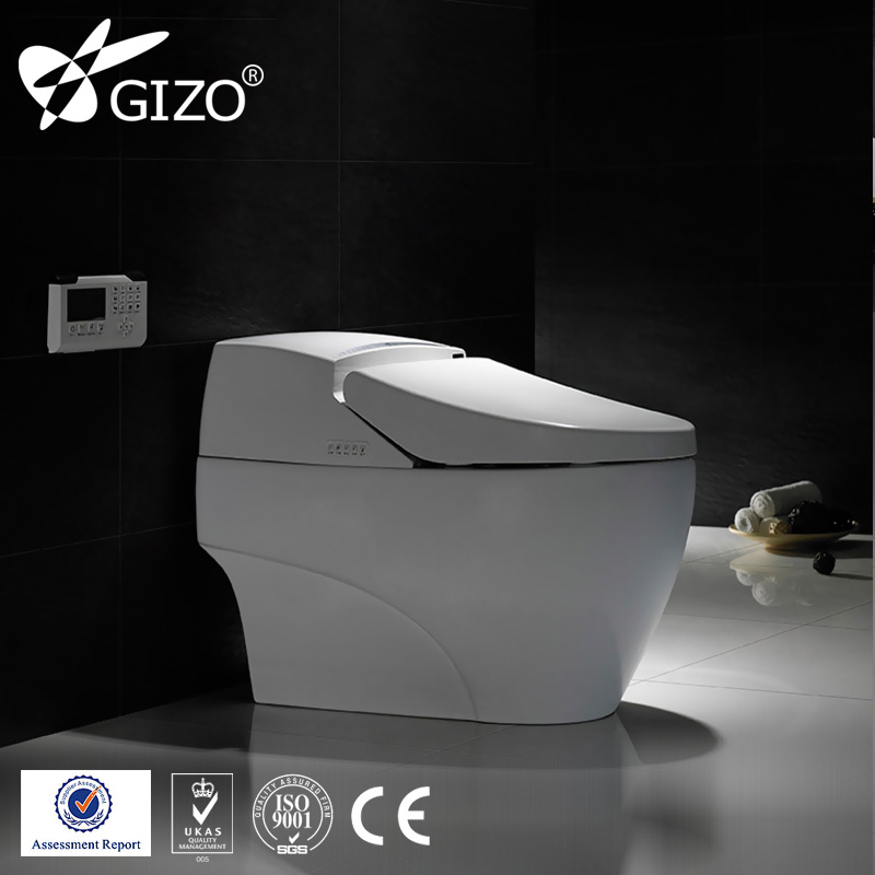 sanitary ware double direct flush one piece smart toilet with sink