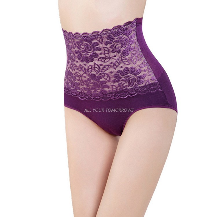 686596187dac1 6 Colors Sexy Women Underwear High Waist Panties Lace Mesh Splice Cotton  Panties Briefs Bodyshaper Plus Size